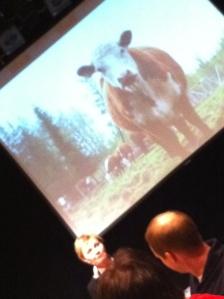 Möte med kött och mjölkbönder på Norrbottens Teatern